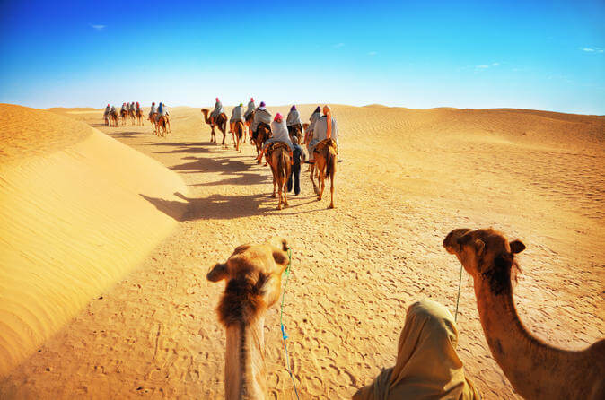 Desert Safari Dubai with Camel Ride