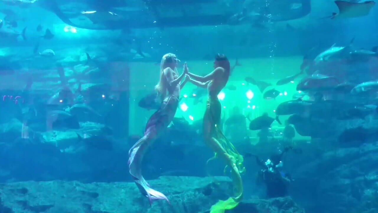 Mermaid show-Dubai Mall Aquarium